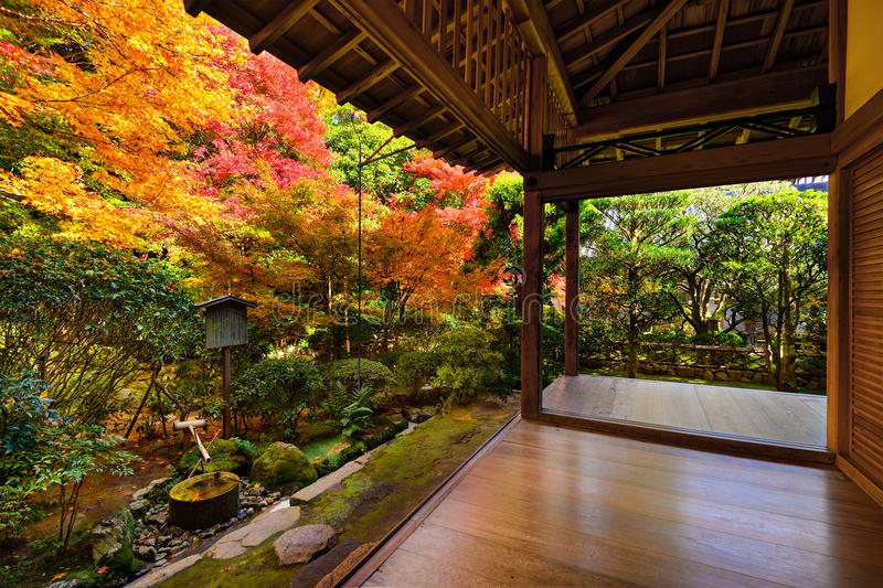 Fogliame di caduta in tempio di Ryoan-ji a Kyoto fotografia stock