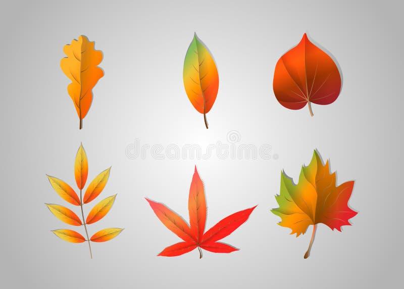 Foglie cadenti di autunno isolate su fondo grigio Illustrazione di vettore illustrazione vettoriale