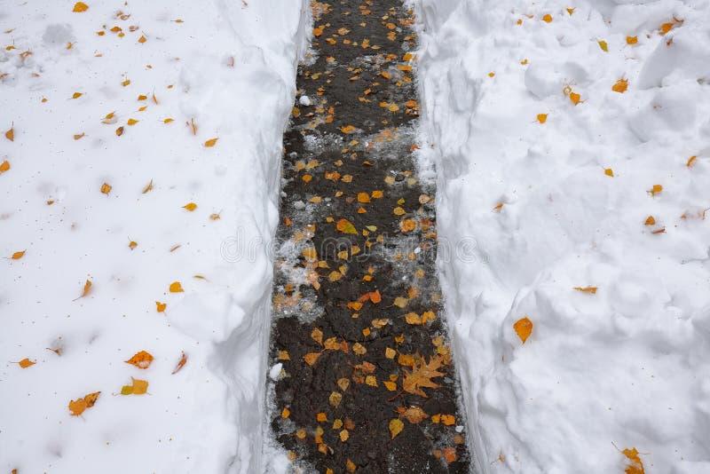 Foglie cadute dell'arancia coperte di neve che si trova sul sentiero per pedoni immagini stock