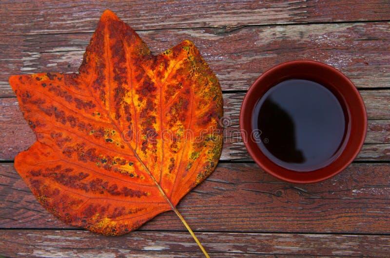 Foglie cinesi nere del giardino di autunno del tè fotografia stock