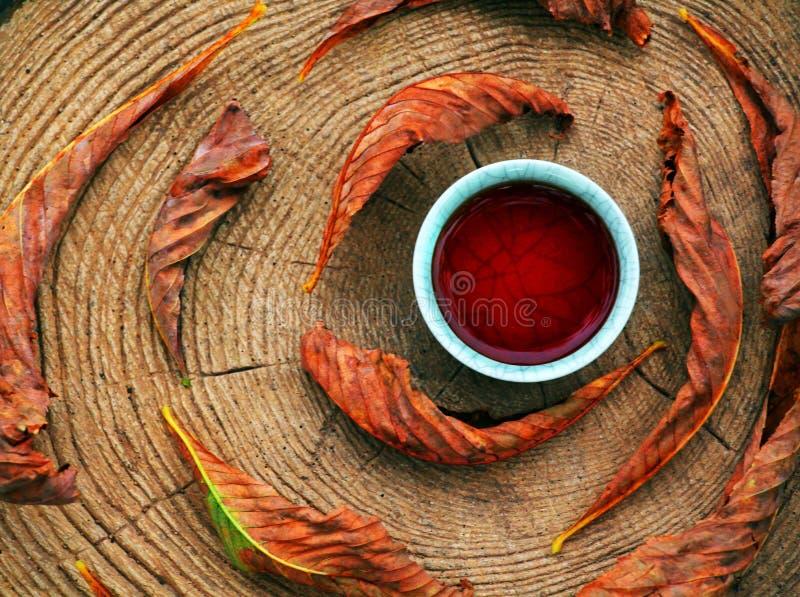 Foglie cinesi nere del giardino di autunno del tè fotografia stock libera da diritti