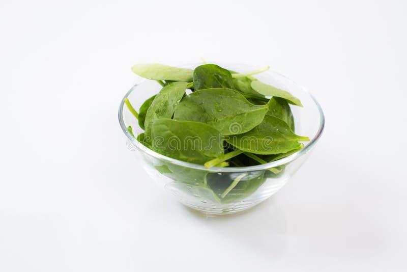 Foglie degli spinaci del bambino nella ciotola di vetro immagini stock