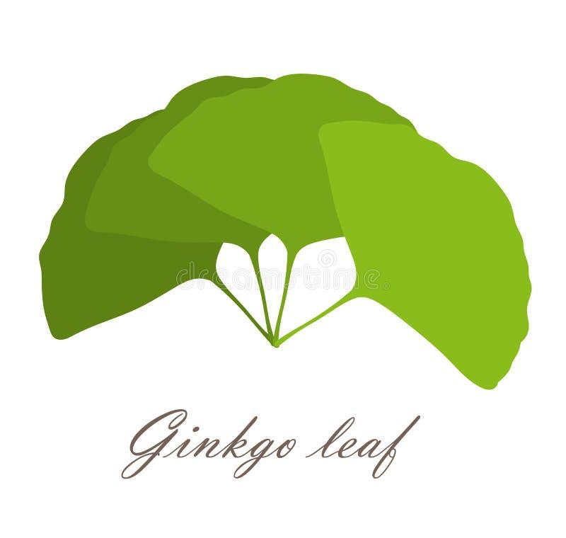 Foglie del ginkgo illustrazione di stock