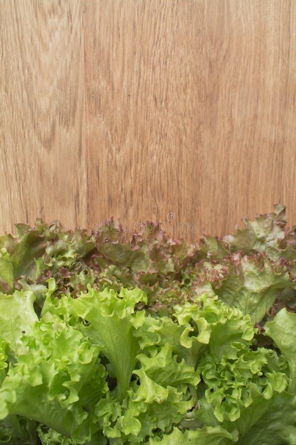 Foglie dell'insalata sul tagliere fotografie stock libere da diritti