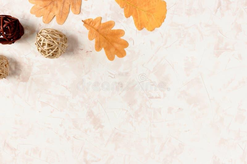 Foglie della quercia e palle asciutte del rattan fotografia stock libera da diritti