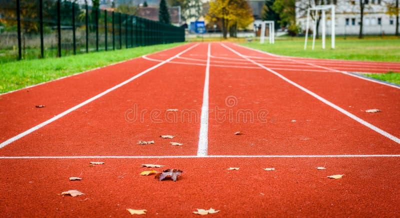 Foglie di acero sulla pista corrente atletica in stadio fotografia stock