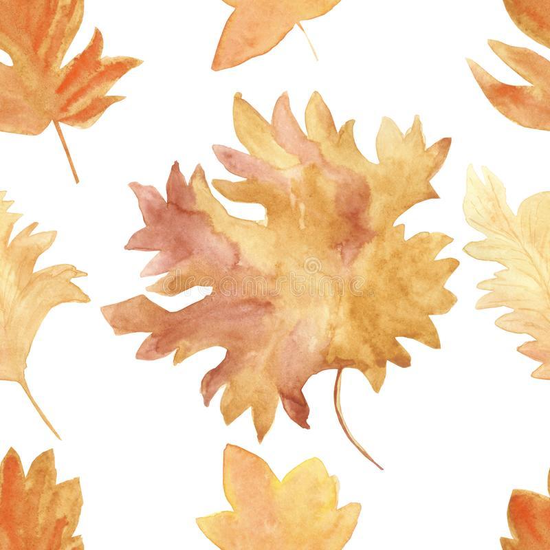 Foglie di acero variopinte di autunno del modello senza cuciture dell'acquerello in un ballo rotondo isolate su fondo bianco illustrazione vettoriale