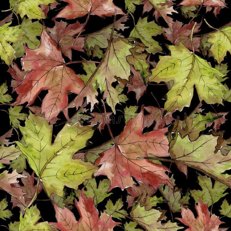 Foglie di acero verdi e rosse dell'acquerello Fogliame floreale del giardino botanico della pianta della foglia Modello senza cuc immagine stock