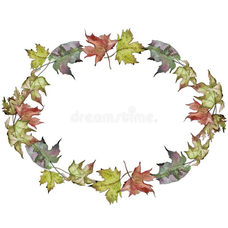 Foglie di acero verdi e rosse dell'acquerello Fogliame floreale del giardino botanico della pianta della foglia Quadrato dell'orn illustrazione di stock