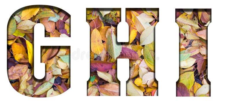 Foglie di autunno delle lettere di ABC, su un fondo bianco fotografia stock libera da diritti