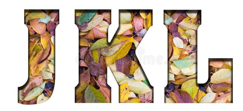 Foglie di autunno delle lettere di ABC, su un fondo bianco immagini stock libere da diritti