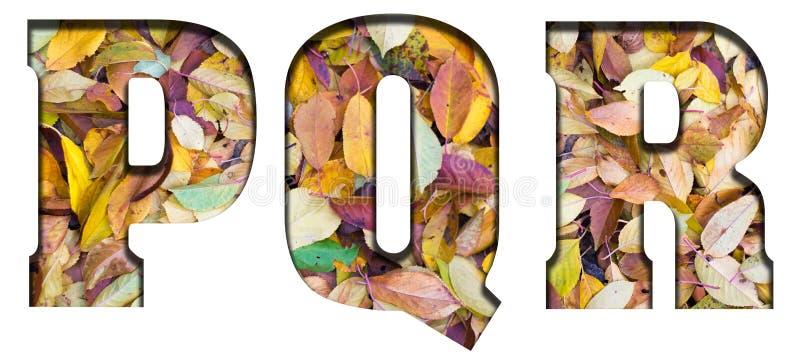 Foglie di autunno delle lettere di ABC, su un fondo bianco immagini stock