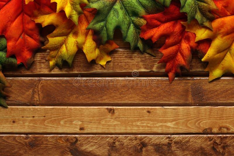 Foglie di autunno su di legno immagine stock