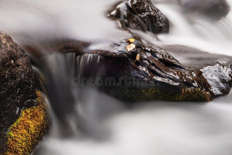 Foglie di autunno sulle pietre nel fiume Tiro lungo di esposizione fotografia stock libera da diritti