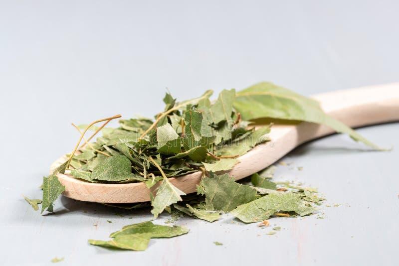 foglie di betulla secche su una tavola di legno fotografia stock