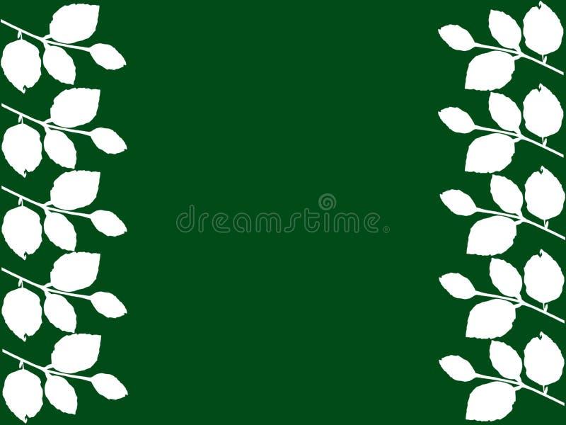 Foglie di bianco con fondo verde immagini stock