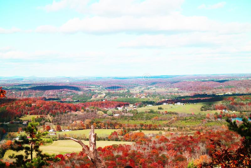 Foglie di caduta di Shenandoah Valley fotografie stock libere da diritti