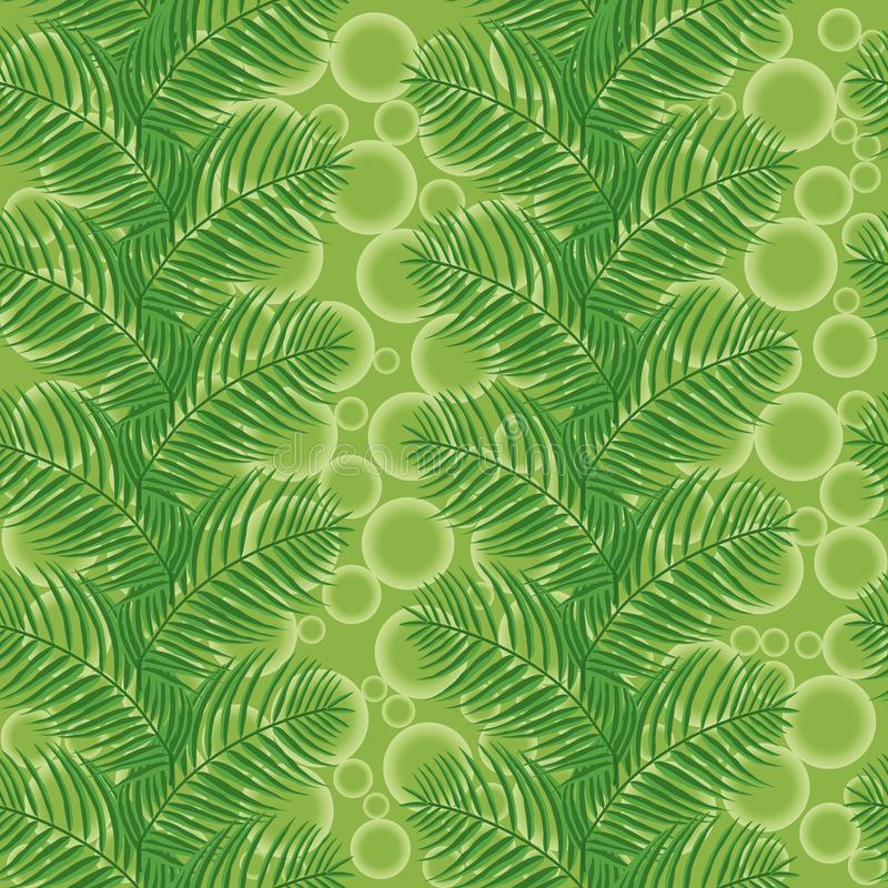 Foglie di palma su un fondo verde con i cerchi immagini stock