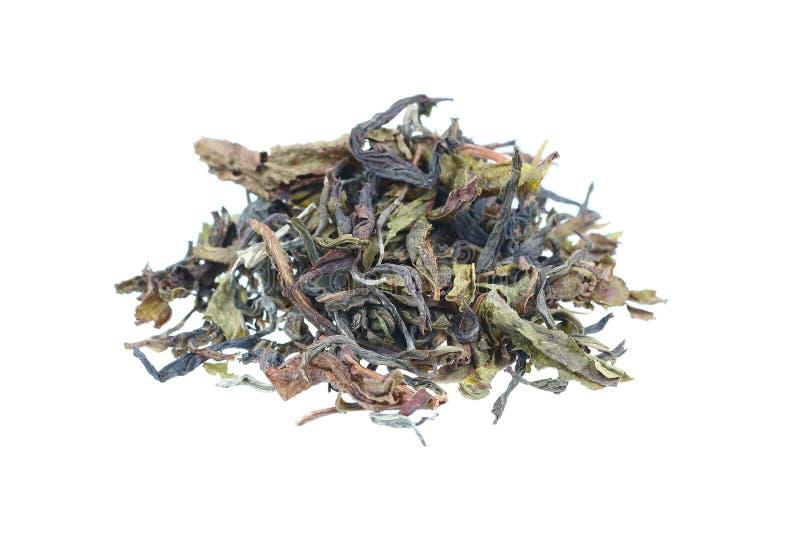 foglie di tè del mucchio isolate su bianco fotografie stock