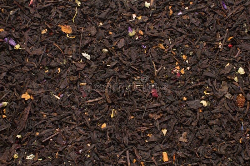 Foglie di tè nere della montagna con i fiori e la struttura di frutti fotografie stock