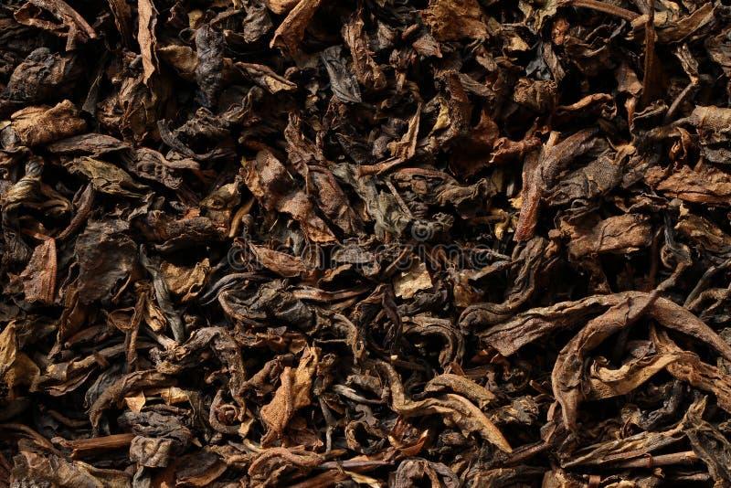 Foglie di tè nere secche fotografie stock