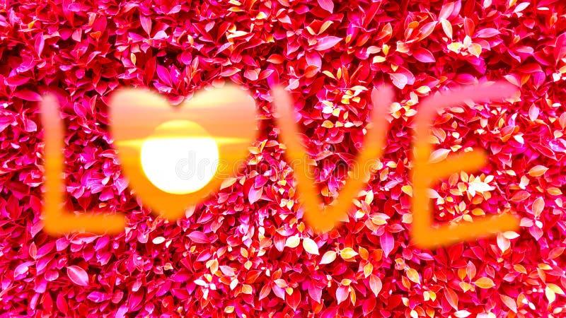 foglie di tiraggio e di rosso di arte del testo di amore fotografia stock libera da diritti