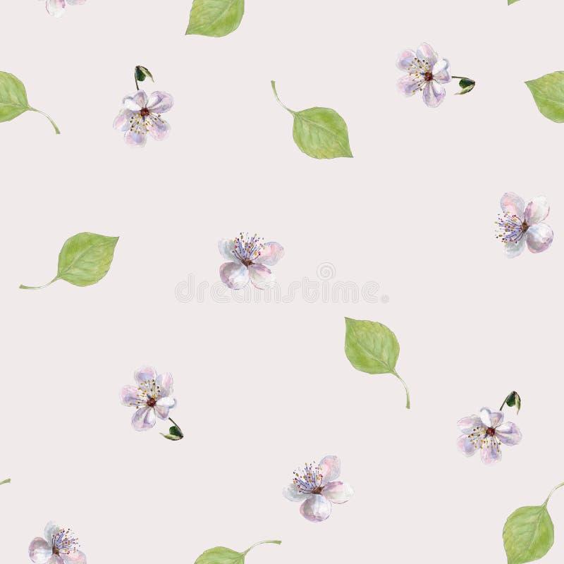 Foglie e fiori dell'acquerello Modello senza cuciture floreale su un fondo latteo royalty illustrazione gratis
