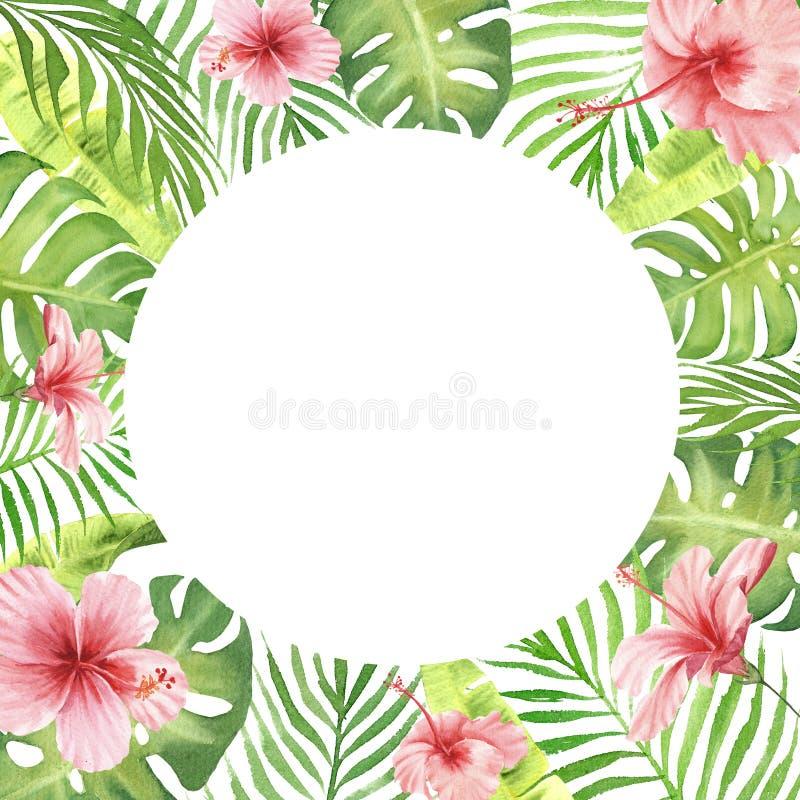 Foglie e fiori tropicali di verde della struttura del confine dell'acquerello illustrazione vettoriale
