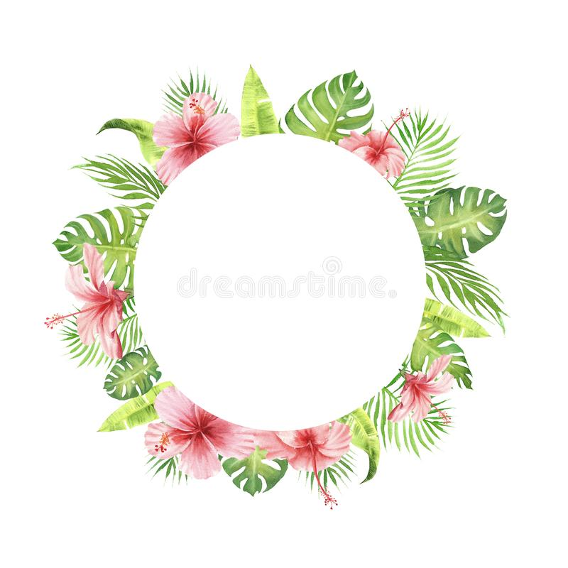 Foglie e fiori tropicali di verde della struttura del confine dell'acquerello royalty illustrazione gratis