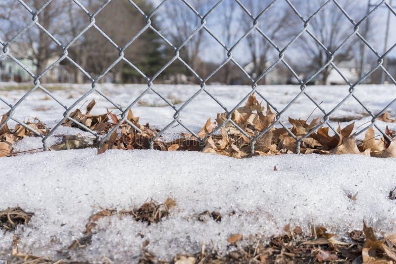 Foglie e neve delle patatine fritte attaccate ad un recinto fotografie stock
