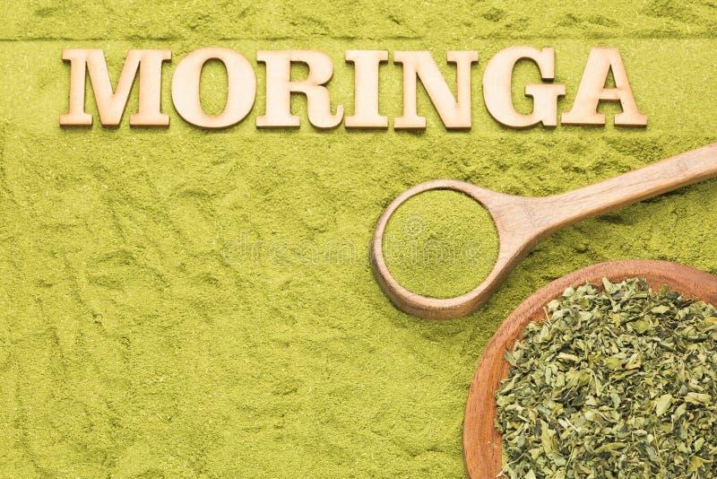 Foglie e polvere asciutte di moringa - moringa oleifera Spazio del testo fotografia stock