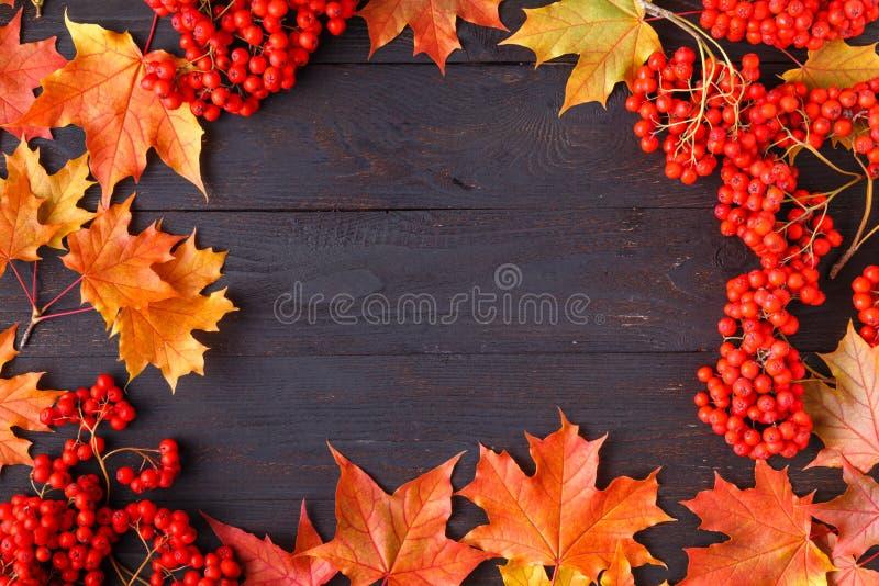 Foglie e testo di autunno luminosi; il fondo generico di caduta, perfeziona per le insegne di vendita, invito di nozze o conserva immagini stock libere da diritti