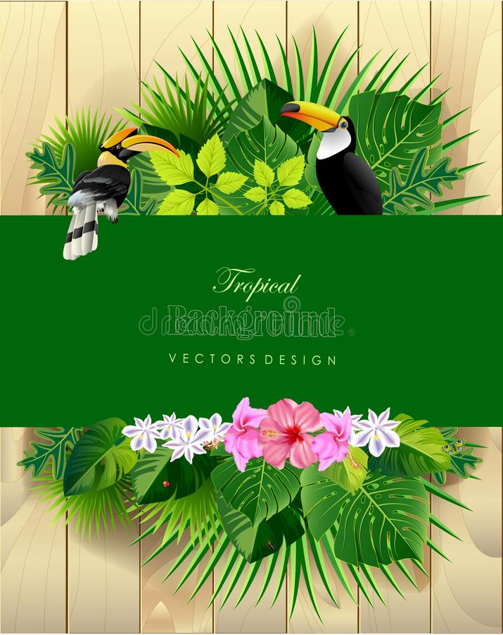 Foglie ed animale tropicali illustrazione di stock