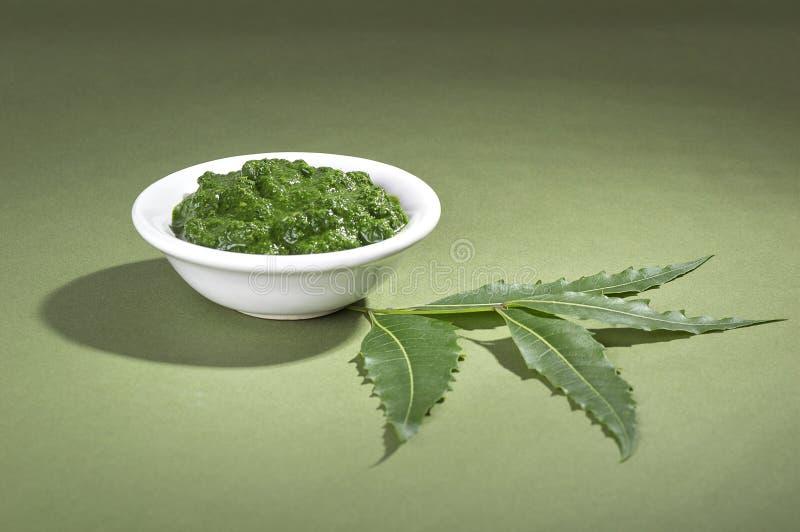 Foglie medicinali del neem con pasta immagini stock