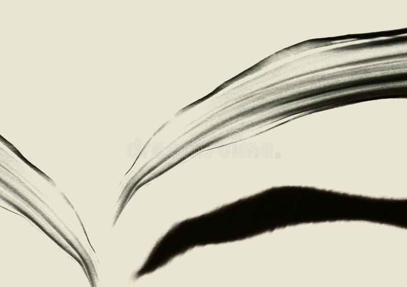 Foglie trasparenti con ombra su un fondo marrone chiaro immagini stock