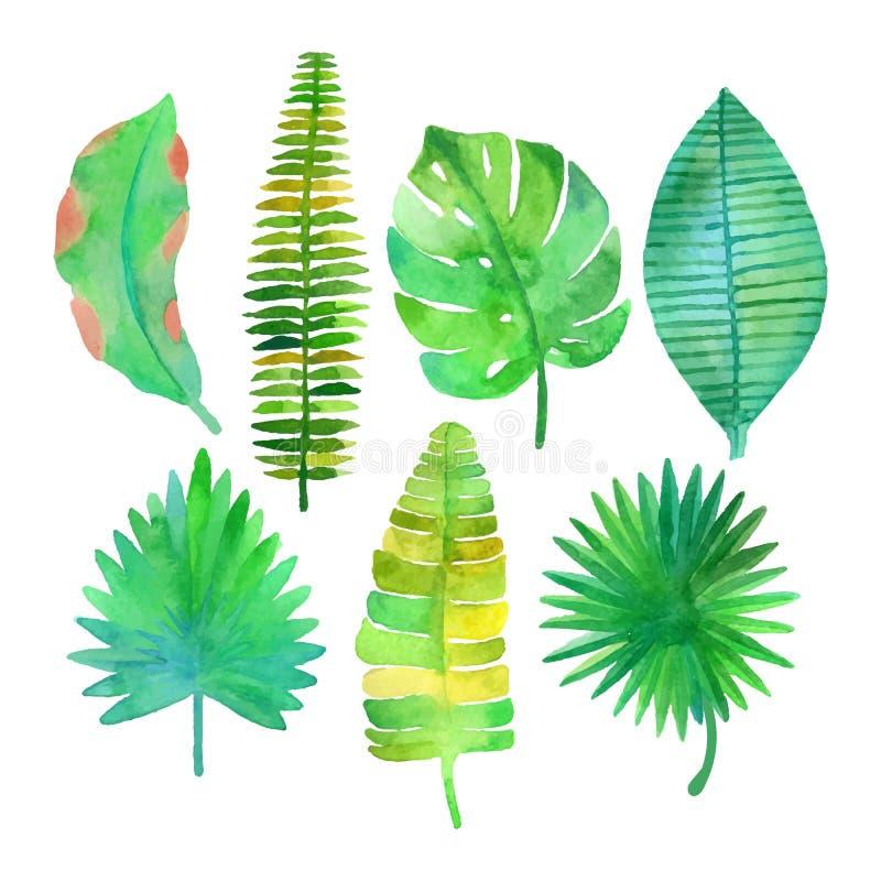 Foglie tropicali dell'acquerello messe illustrazione vettoriale