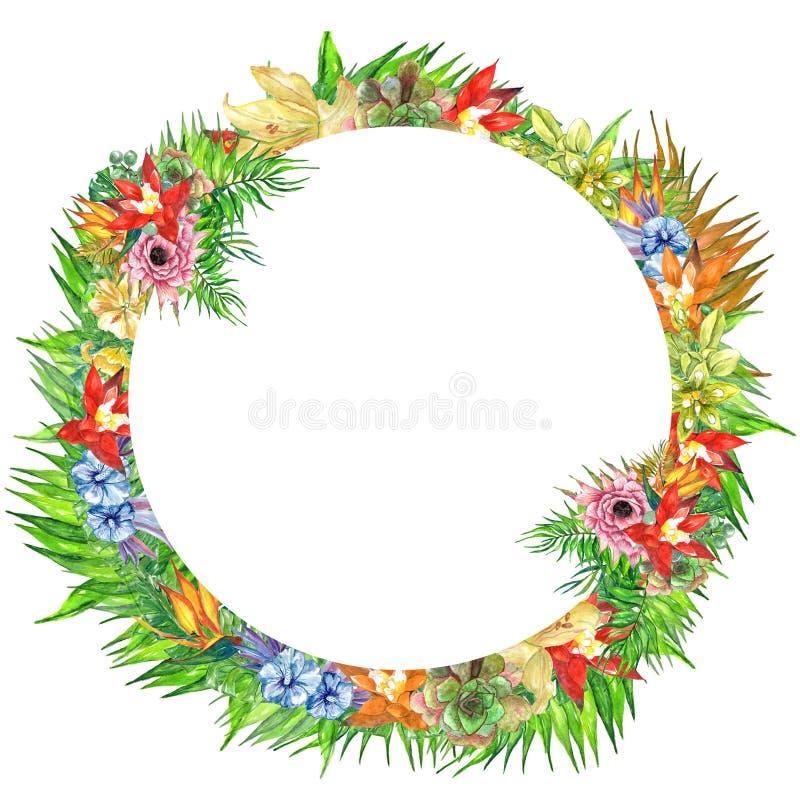 Foglie tropicali e rami della struttura rotonda dell'acquerello isolati su fondo bianco! struttura tropicale delle foglie verdi! royalty illustrazione gratis