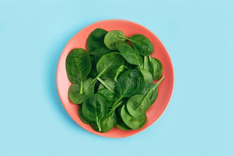 Foglie vegetariane fresche verdi dell'insalata sul piatto di corallo su fondo blu Concetto residuo sano e zero di vita immagine stock