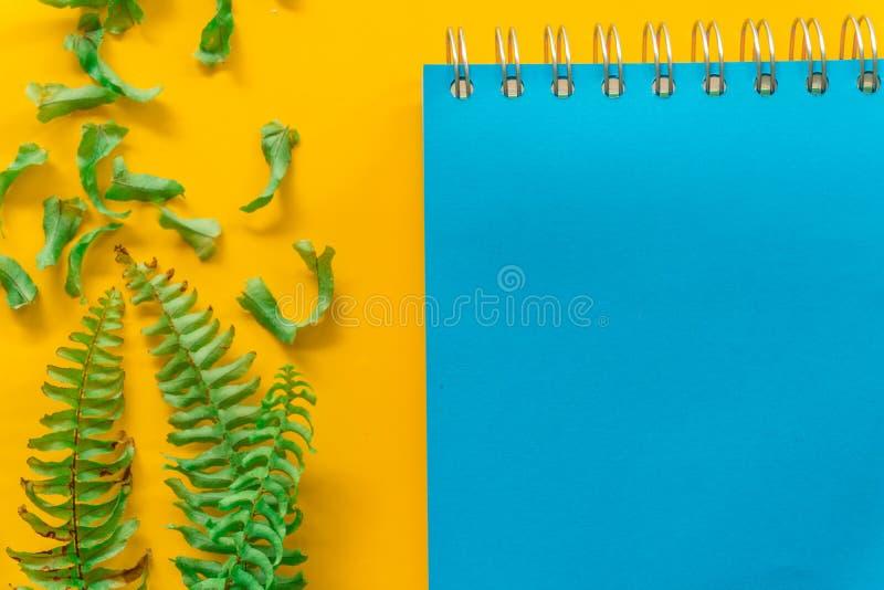 Foglie verdi blu del taccuino minime su fondo giallo fotografie stock libere da diritti