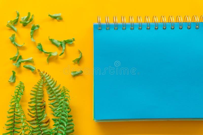 Foglie verdi blu del taccuino minime su fondo giallo fotografie stock