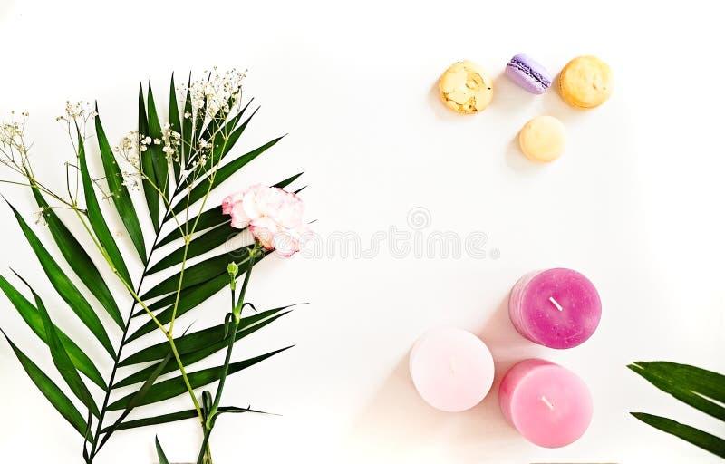 Foglie verdi, candele, fiore, maccheroni su bianco Bellezza l piana fotografia stock libera da diritti