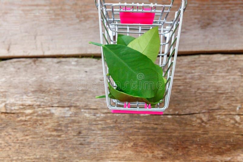 Foglie verdi in carretto del giocattolo fotografie stock libere da diritti