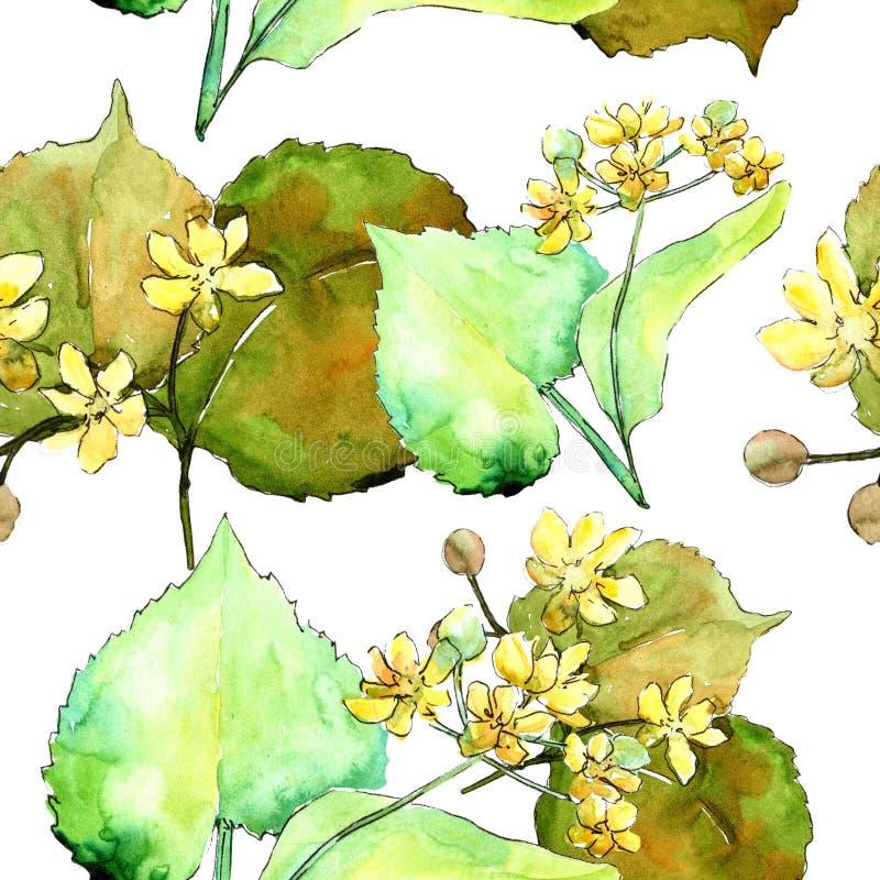 Foglie verdi del tiglio dell'acquerello Fogliame floreale del giardino botanico della pianta della foglia Modello senza cuciture  illustrazione vettoriale