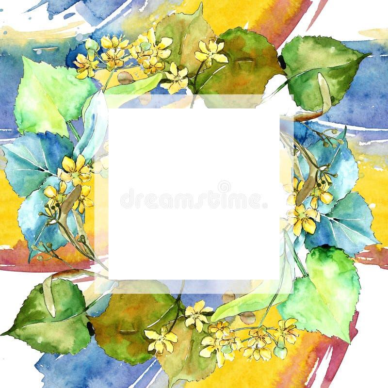 Foglie verdi del tiglio dell'acquerello Fogliame floreale del giardino botanico della pianta della foglia Quadrato dell'ornamento illustrazione vettoriale