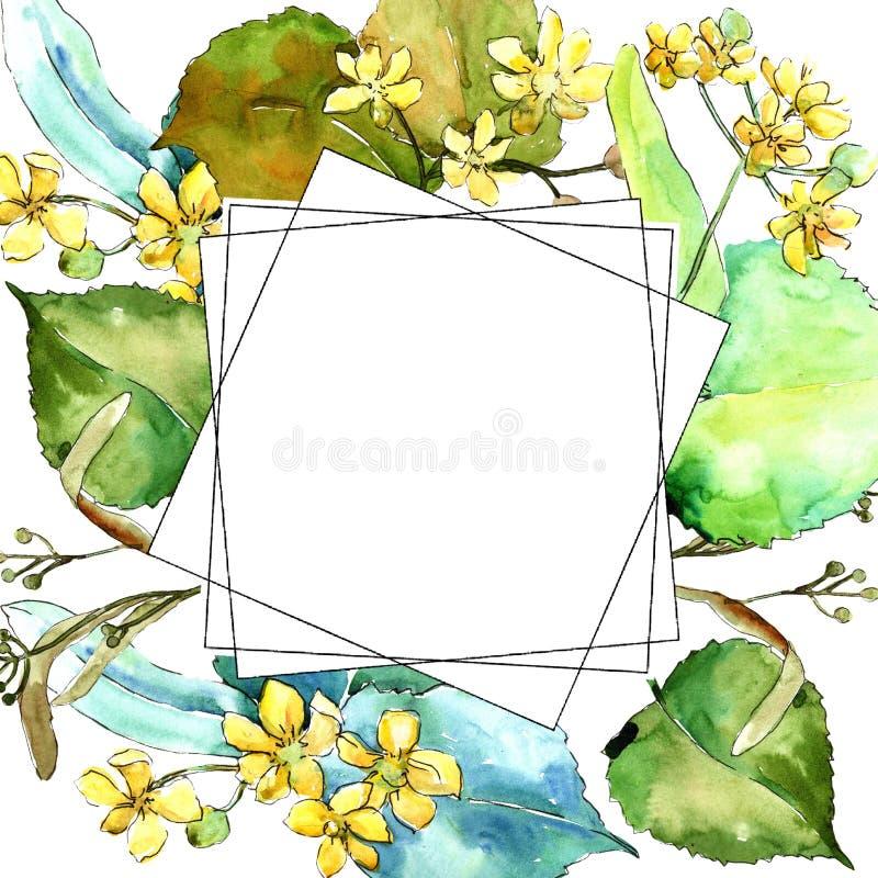 Foglie verdi del tiglio dell'acquerello Fogliame floreale del giardino botanico della pianta della foglia Quadrato dell'ornamento illustrazione di stock
