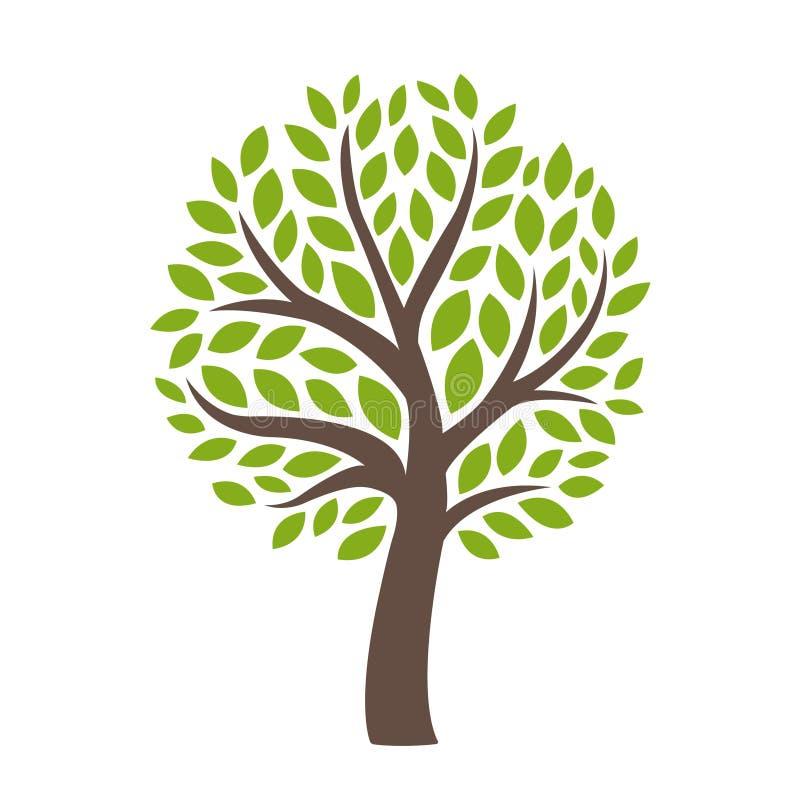 Foglie verdi stilizzate isolate dell'albero fotografie stock libere da diritti