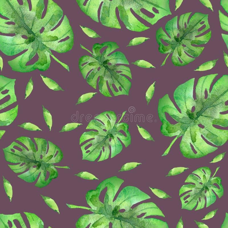 Foglii di palma dell'acquerello immagine stock