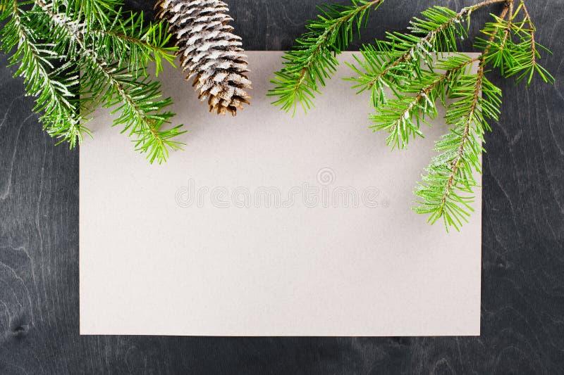 Foglio bianco di carta e rami del pino immagine stock