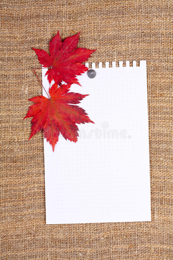 Foglio di carta allegato dal tasto fotografia stock
