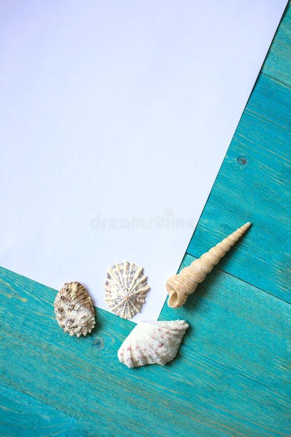 Foglio di carta bianco (spazio per testo), conchiglie, legno blu fotografie stock libere da diritti